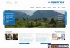 Website for Freestyle Brasov
