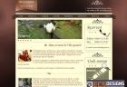 Website for Vila Gemini