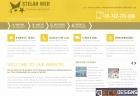 Website for Stelar Web