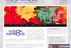 Website Vision Improve