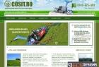 Website Cosit.ro